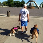 Structured walk with Pal and Lilly